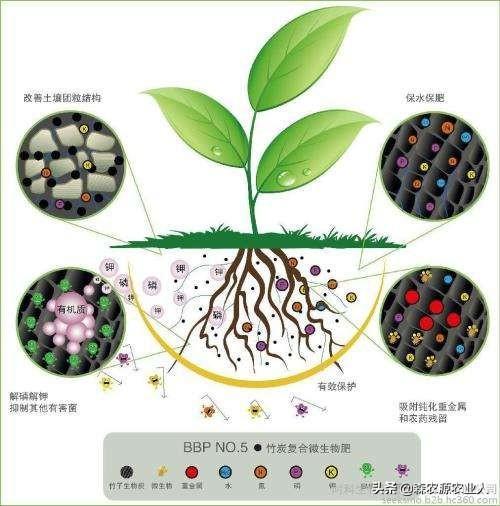 农民朋友们来学习一下生物肥料特性与施用